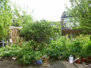 tuin-vandaag